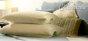 Rejuvenite Latex Pillows