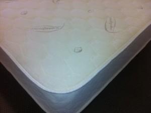 Certified Organic Latex Foam Mattresses